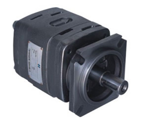IGP-2 Internal gear pump