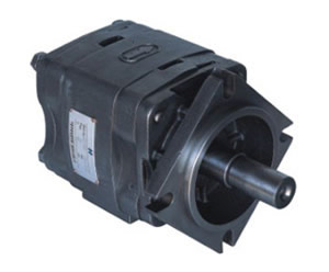 IGP-3 Internal gear pump