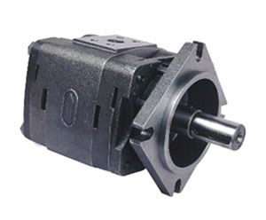 IGP-4 Internal gear pump