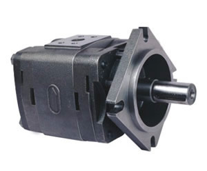 IGP-5 Internal gear pump
